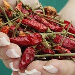 top-fat-burning-foods