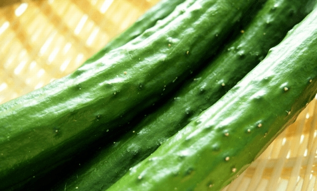 diet-exp-cucumber-01