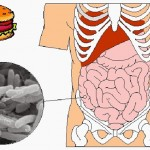 food-poisoning-causes-symptoms-treatments