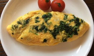 parsley-omlette_ec