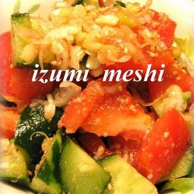 salad-tomato-cucumber