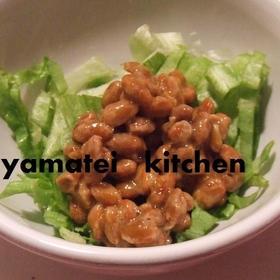 natto-lettuce