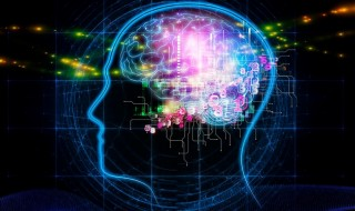 prevention-of-brain-aging