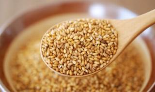 health-benefits-of-sesame-seeds