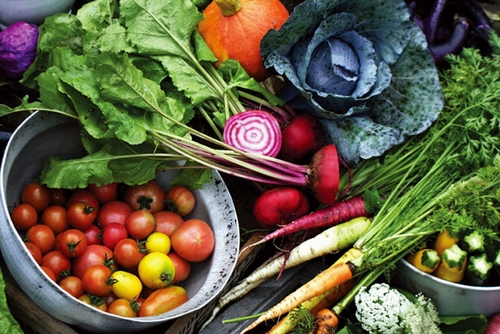 organinc-veggie%ef%bc%92
