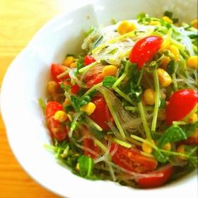 doumiao-harusame-salad