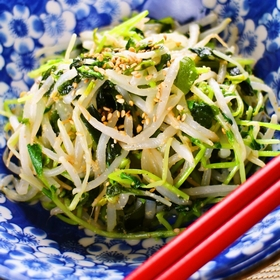 doumiao-moyashi-namul