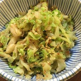goma-ae-cabbage