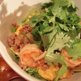 coriander-ethnic-bowl
